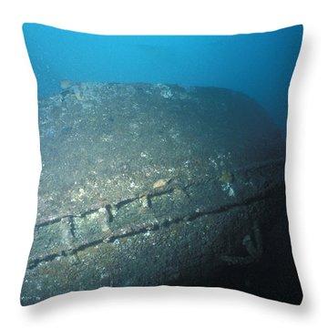 The Shipwrecked Bow Of The Tasman Throw Pillow