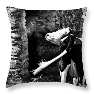 The Shy And The Impolite Throw Pillow