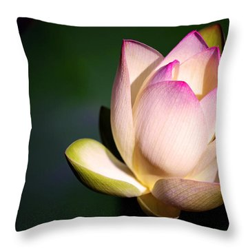 The Silent One Throw Pillow by Melanie Moraga