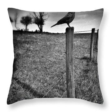 The Silent Warn  Throw Pillow by Jerry Cordeiro