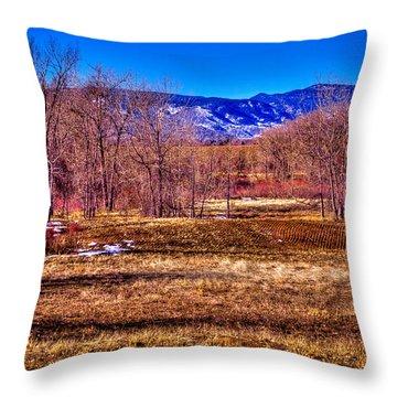 The South Platte Park Landscape Throw Pillow by David Patterson