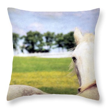 The Stare Throw Pillow by Darren Fisher