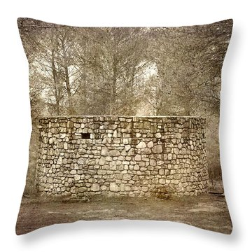 The Stone Forest Becomes An Architectural Circle  Throw Pillow by Guido Montanes Castillo