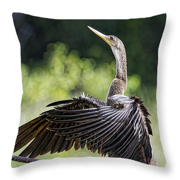 Throw Pillow featuring the photograph The Sun Worshiper by Anne Rodkin