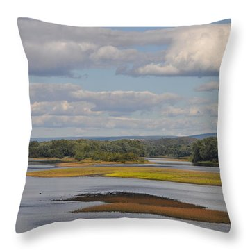The Susquehanna River At Kingston Pa. Throw Pillow by Bill Cannon