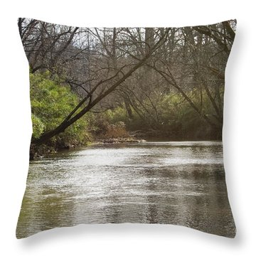 Throw Pillow featuring the photograph The Swimming Hole by Michael Waters