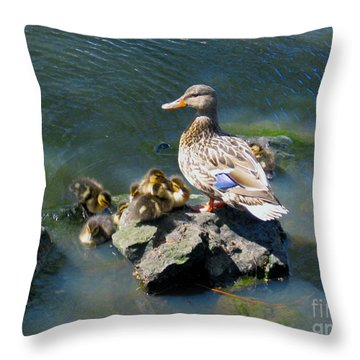 Throw Pillow featuring the photograph The Swimming Lesson by Rory Sagner