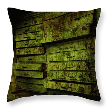 The System Throw Pillow by Jessica Brawley