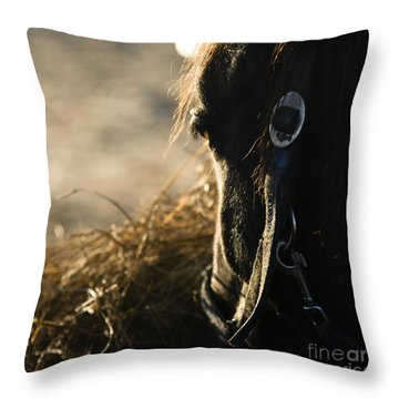 The Taste Of Fresh Hay  Throw Pillow by Angel  Tarantella