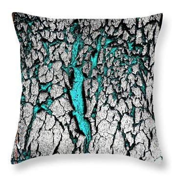 Throw Pillow featuring the photograph The Teal Scratches by Amy Sorrell