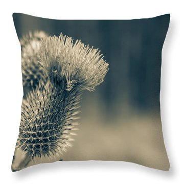 The Thistle Throw Pillow by Andreas Levi