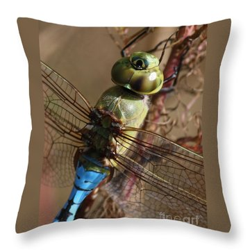 The Thorax Throw Pillow by Carol Groenen