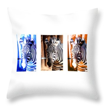 Throw Pillow featuring the photograph The Three Zebras White Borders by Rebecca Margraf
