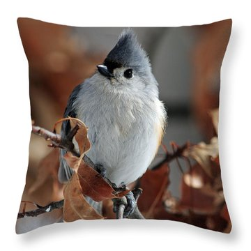 The Titmouse Throw Pillow by Mike Martin