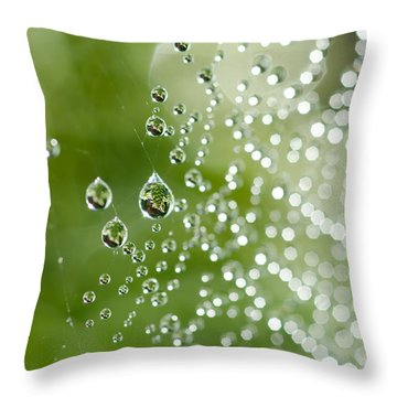 The Trapped Fern Throw Pillow