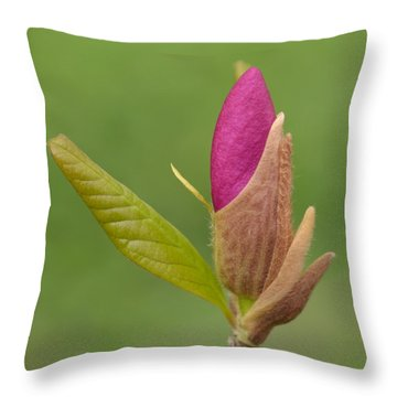 The Unvieling Throw Pillow