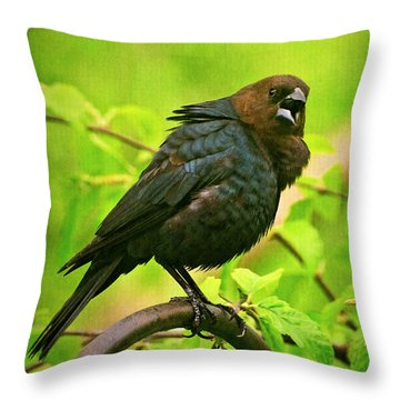 The Usurper Throw Pillow by Lois Bryan