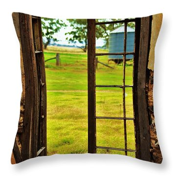 Throw Pillow featuring the photograph The View From Within by Blair Stuart