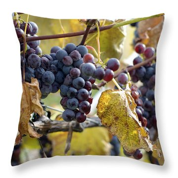 Throw Pillow featuring the photograph The Vineyard by Linda Mishler
