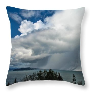 Throw Pillow featuring the photograph The Wall by David Gleeson
