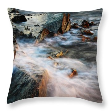 The Wash Throw Pillow