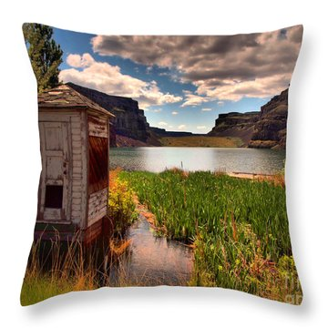 The Water Shed Throw Pillow by Tara Turner
