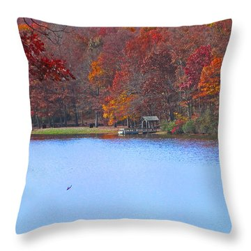 The Watershed Throw Pillow by Lynn Bauer