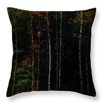 The Way To Glow From The Darkness Throw Pillow by Jenny Rainbow