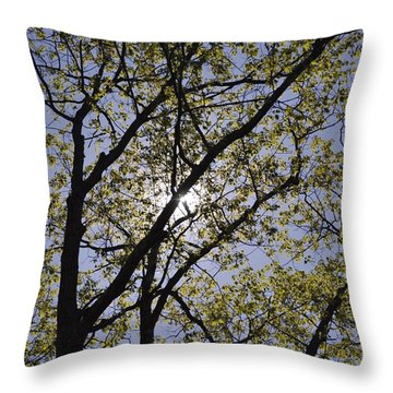 Weeping Throw Pillow by Dottie Branchreeves