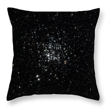 The Wild Duck Cluster Throw Pillow by Rolf Geissinger