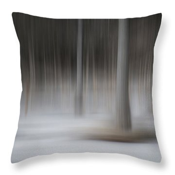 The Winter Warming Throw Pillow