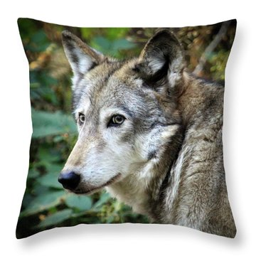 Throw Pillow featuring the photograph The Wolf by Steve McKinzie