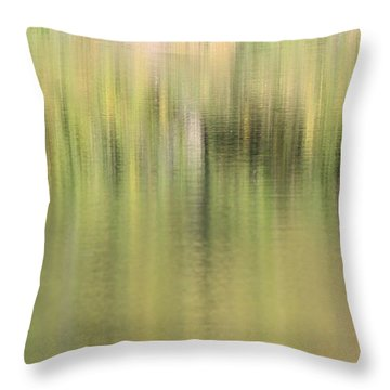 Throw Pillow featuring the photograph The Woods by Penny Meyers