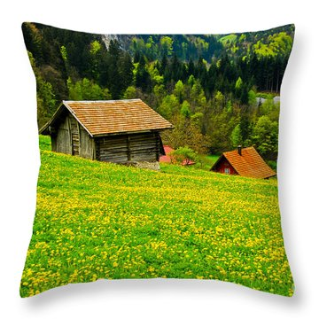 The Yellow Around Throw Pillow by Syed Aqueel