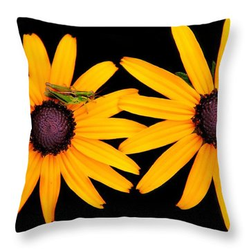 Throw Pillow featuring the photograph The Yellow Rudbeckia by Davandra Cribbie