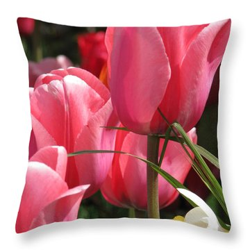 There Is Pink In Heaven Throw Pillow by Rory Sagner