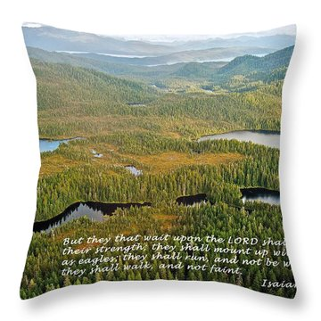 They That Wait 8995 Throw Pillow by Michael Peychich