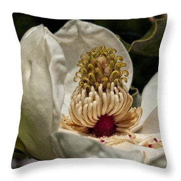 Third Stage Throw Pillow