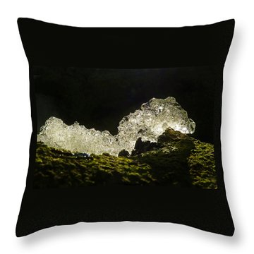 Throw Pillow featuring the photograph This Is A Very Hungry Cold Caterpillar  by Steve Taylor