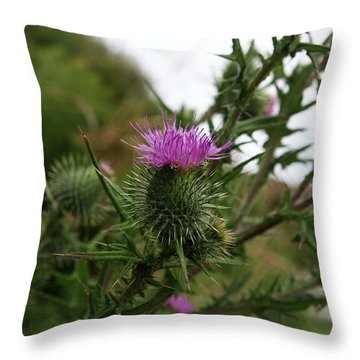 Throw Pillow featuring the photograph Thistle Bloom by Lorraine Devon Wilke