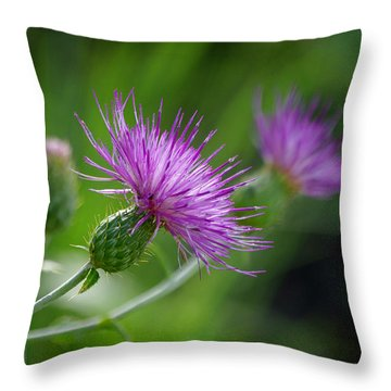 Throw Pillow featuring the photograph Thistle Dance by Vicki Pelham