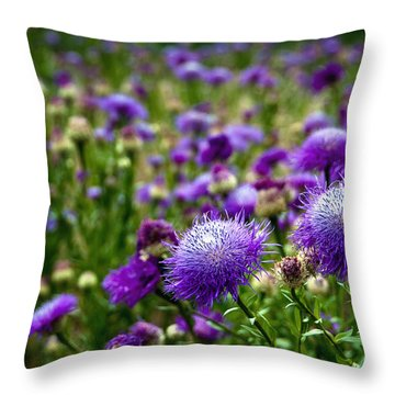 Thistle Field Throw Pillow by Tamyra Ayles