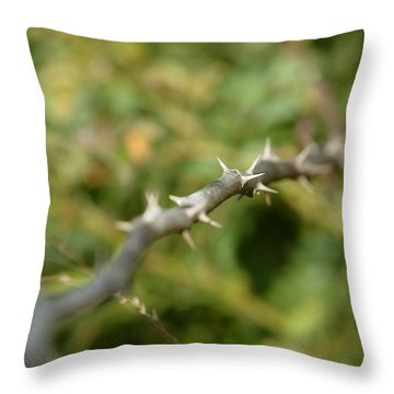 Thorny Throw Pillow by Lisa Phillips