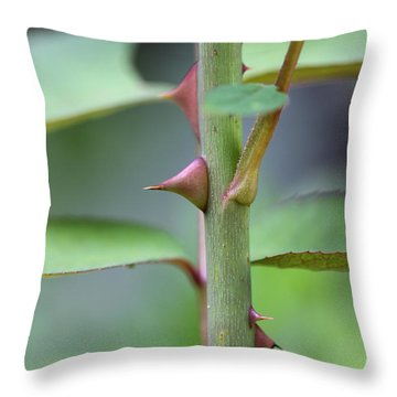 Thorny Stem Throw Pillow
