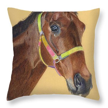 Thoroughbred Throw Pillow by Patricia Barmatz