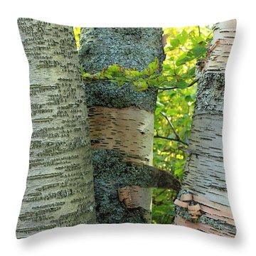 Throw Pillow featuring the photograph Three Birch Tree Trunks by Jim Sauchyn