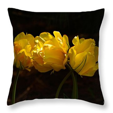 Three Cheers For April Throw Pillow by Byron Varvarigos