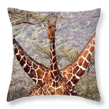 Three Headed Giraffe Throw Pillow