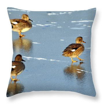 Threesome Throw Pillow by Marty Koch