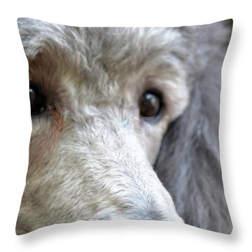 Through Dusty's Eyes Throw Pillow by Maria Urso